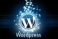 Как настроить время показа виджета в Wordpress